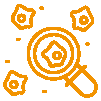 top-data-science-icon-3
